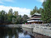 Парк с прудом во дворце Норублингка