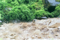 Пожалуй, самая могучая из пяти стихий, в период муссона.