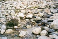 """""""Всюду жизнь"""" (ремейк). Тибет. Перевал Лалунг-Ла 5050м"""