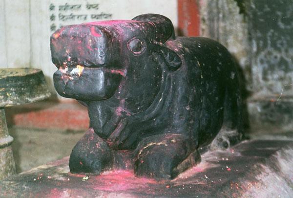 Когда рев буйвола эффективней человеческого плача. Один из миллиона жертвенных алтарей в Катманду