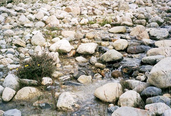 """""""Всюду жизнь"""" (ремейк). Тибет. Перевал Лалунг-Ла 5050м."""